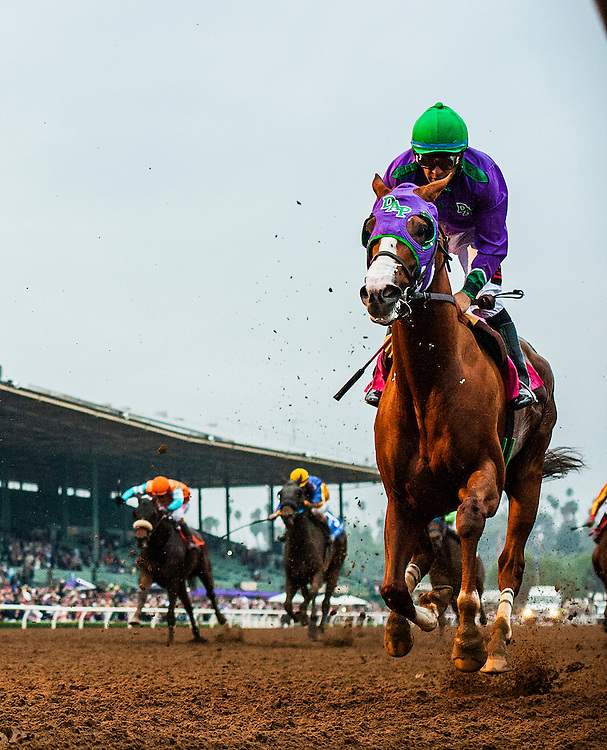 February 07 2015: California Chrome and Victor Espinoza race in the San Antonio Stakes at Santa Anita Park in Arcadia CA. Alex Evers/ESW/CSM
