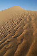 Dubai Conservation Desert Reserve in Mirdif. Dubai. United Arab Emirates.<br />