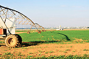 Israel, Northern Negev Desert, Mobile watering system in a Wheat Field. Gaza in the background. A Kassam Missile can be seen launched on the left