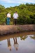 Januaria, 22 de marco de 2009..A fazenda Agroecologica Soma, se intitula uma fazenda produtora de agua. Localiza no municipio de Januaria, a 250 km de Montes Claros, usa a tecnica de Barraginhas ou Bacias de Captacao de Agua de Chuva para recuperar os lencois freaticos e consequentemente os rios da regiao. Em 2005, foram construidas mais de 300 barraginhas na regiao, e acredita-se que o volume de agua dos lencois freaticos cresceu, inclusive com a recuperacao de um rio que corta a propriedade...Na foto, Berilo Prates Maia Filho (esq) e Juliano de Souza Maia, proprietarios da fazenda e responsaveis pela aplicacao da tecnologia na regiao, em uma das barraginhas construidas...FOTO: BRUNO MAGALHAES / AGENCIA NITRO