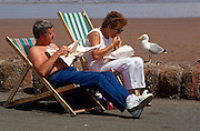 A holiday couple sit in deck-chairs to enjoy their chips wrapped in paper, the traditional way for eating fish and chips while at the seaside. The people scoff their food as a seagull stands patiently on the promenade wall waiting to scavenge from anything dropped or left behind. The bird's razor-sharp beak will cause injury and distress so the couple eat quickly before moving on.