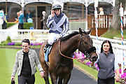 GILGAMESH (9) ridden by jockey Edward Greatrex and trained by George Scott enters the Winners Enclosure after winning The Constant Security Handicap Stakes over 7f (£25,000)at York Racecourse, York, United Kingdom on 26 May 2018. Picture by Mick Atkins.