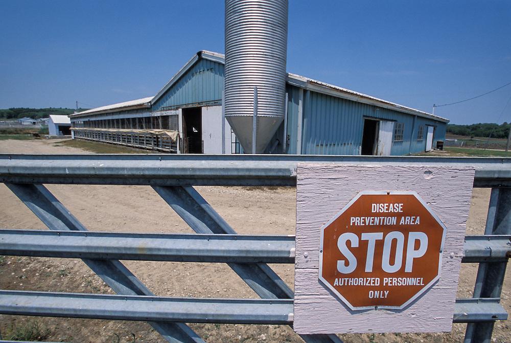 Kansas, USA - Biosecurity measures at beef feedlot