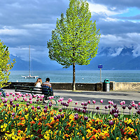 Romantic Couple With Tulips Along Lake Geneva in Ouchy, Switzerland <br /> Few settings are more romantic than sitting on a bench close to your partner along Quai de Beique in Ouchy. The promenade is encircled by hundreds of gorgeous tulips and pansies. Who needs words when you can hold hands while marveling at the beauty of the Alps from across Lake Geneva along the southern shore?