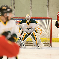 1st year goalie Michael Herringer(35) of the Regina Cougars in action during the Men's Hockey home game on February 3 at Co-operators arena. Credit: Arthur Ward/Arthur Images