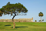 On the park grounds of the Castillo de San Marcos a tree frames one of the watch towers. The coquina fort is located in the nation's oldest city, St. Augustine, Florida.