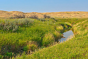 River and rolling hills and coulees of mixed-grass native prairie<br />Grasslands National Park<br />Saskatchewan<br />Canada