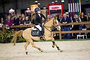 Isabeau van Erp - Amigo<br /> Indoor Brabant 2017<br /> © DigiShots