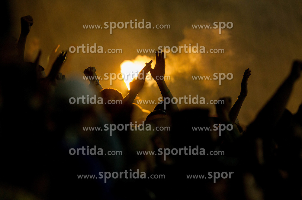 Viole, fans of Maribor during Second Leg football match between NK Maribor (SLO) and FC Viktoria Plzen (CZE) of UEFA Champions League 2013/14 Play-Offs on August 28, 2013 in Stadium Ljudski vrt, Maribor, Slovenia. (Photo by Vid Ponikvar / Sportida.com)