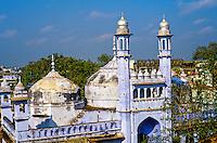 Gyanvapi Mosque (Great Mosque of Auran Aurangzeb), Varanasi (Benares), Uttar Pradesh, India