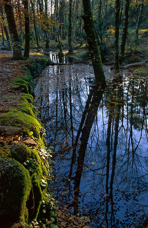 Reflections on a pond in the Portela do Leonte, a trailhead in the only national park in Portugal, Peneda-Geres National Park.