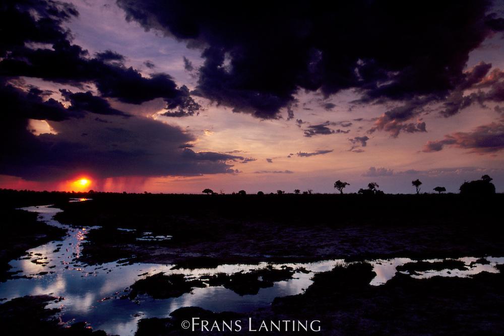 Rainstorm, Luangwa Valley, Zambia