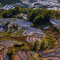 China - Yuanyang (Yunnan)