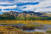 Alaska Range from Broad Pass