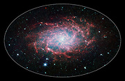 One of our closest galactic neighbours shows its awesome beauty in this new image from NASA's Spitzer Space Telescope. M33, also known as the Triangulum Galaxy, is a member of what's known as our Local Group of galaxies. Along with our own Milky Way, this group travels together in the universe, as they are gravitationally bound. In fact, M33 is one of the few galaxies that is moving toward the Milky Way despite the fact that space itself is expanding, causing most galaxies in the universe to grow farther and farther apart. When viewed with Spitzer's infrared eyes, this elegant spiral galaxy sparkles with colour and detail. Stars appear as glistening blue gems (many of which are actually foreground stars in our own galaxy), while dust in the spiral disk of the galaxy glows pink and red. But not only is this new image beautiful, it also shows M33 to be surprising large—bigger than its visible-light appearance would suggest. With its ability to detect cold, dark dust, Spitzer can see emission from cooler material well beyond the visible range of M33's disk. Exactly how this cold material moved outward from the galaxy is still a mystery, but winds from giant stars or supernovas may be responsible.M33 is located about 2.9 million light-years away in the constellation Triangulum. This composite image was taken by Spitzer's infrared array camera. The colour blue indicates infrared light of 3.6 microns, green shows 4.5-micron light, and red 8.0 microns.