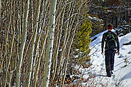 A man hiking on Glacier Trail, Wind River Range near Dubois in Wyoming on a sunny day in early spring.
