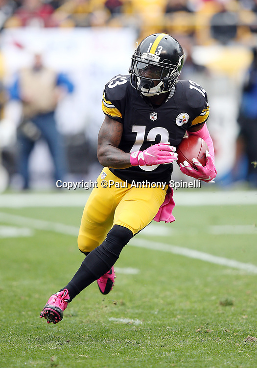 Pittsburgh Steelers running back Dri Archer (13) returns a kick off during the 2015 NFL week 6 regular season football game against the Arizona Cardinals on Sunday, Oct. 18, 2015 in Pittsburgh. The Steelers won the game 25-13. (©Paul Anthony Spinelli)