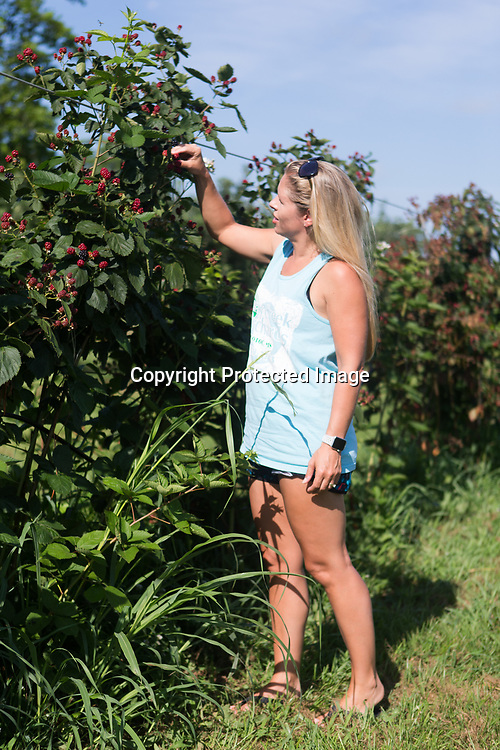 Cherry Creek Orchards co-owner Amanda Stark stops to check how on if the blueberries have ripened for picking yet Wednesday morning while riding through the orchard. Stark has owned the orchard with her husband Wylie since 2010.