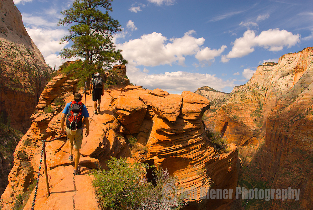 A young man hikes the Angels Landing trail in Zion National Park, Utah.