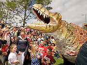 This week at the Galwya Arts Festival the eye-popping visual feast that is the Dinosaur Petting Zoo is an extraordinary performance throught the streets of Galway. Children will got up close and personal with these amazingly life-like creatures during this fun-filled show. Photo:Andrew Downes