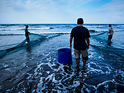 29 JULY 2017 - AIRKUNING, BALI, INDONESIA: A fish buyer waits with a barrel to choose fish as villagers haul in a fishing net in Airkuning, a Muslim fishing village on the southwest corner of Bali. The net was virtually empty and villagers said their regular catch of fish has been diminishing for several years, and that are some mornings that they come back to shore with having caught any fish.    PHOTO BY JACK KURTZ