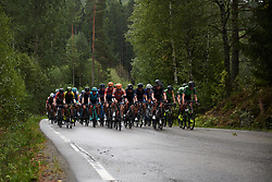 The peloton lead by Megan Guarnier (USA) and Julie Leth (DEN) at Ladies Tour of Norway 2018 Stage 2, a 127.7 km road race from Fredrikstad to Sarpsborg, Norway on August 18, 2018. Photo by Sean Robinson/velofocus.com