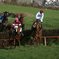 Killaloe Point to Point<br /> <br /> Photograph by Yvonne Vaughan.