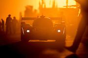 March 15-17, 2018: Mobil 1 Sebring 12 hour. 5 Mustang Sampling Racing, Cadillac DPi, Joao Barbosa, Filipe Albuquerque, Christian Fittipaldi