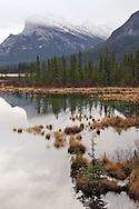 Vermillion Fen - Banff, Alberta