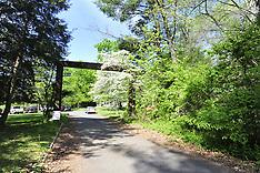 Mettler's Woods - RAW