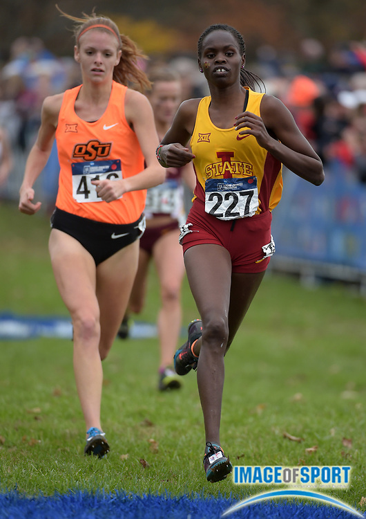 Nov 21, 2015; Louisville, KY, USA; Perez Rotich of Iowa State places 42nd in 20:27 in the womens race during the 2015 NCAA cross country championships at Tom Sawyer Park.