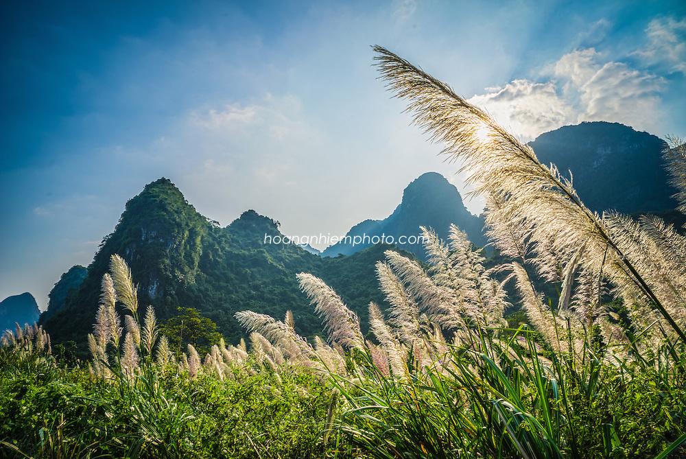 Vietnam Images-landscape-Phong cảnh Ninh Bình