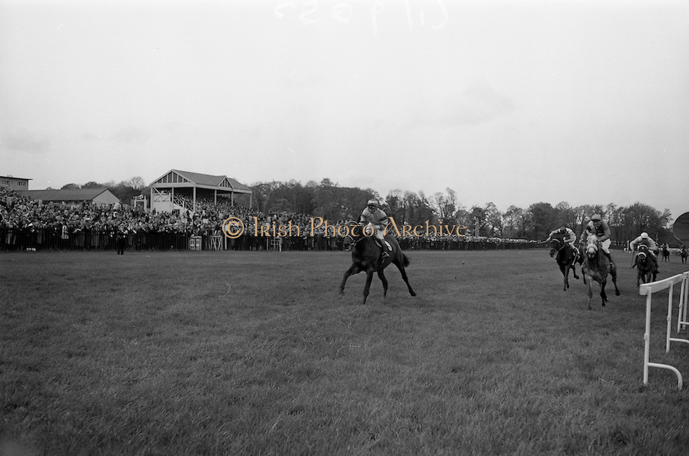 """08/05/1965<br /> 05/08/1965<br /> 08 May 1965<br /> The 1965 Gold Flake Meeting at Leopardstown Racecourse, Co. Dublin. Image shows the Countess de la Valdene's """"Donato"""" (J.M. Purtell up) winning the Wills Gold Flake Stakes from """"Zend Avesta"""" (P. Sullivan up)."""