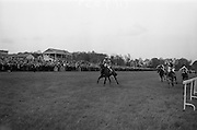 "08/05/1965<br /> 05/08/1965<br /> 08 May 1965<br /> The 1965 Gold Flake Meeting at Leopardstown Racecourse, Co. Dublin. Image shows the Countess de la Valdene's ""Donato"" (J.M. Purtell up) winning the Wills Gold Flake Stakes from ""Zend Avesta"" (P. Sullivan up)."
