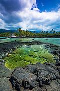 Coral reef and heiau, Pu'uhonua O Honaunau National Historic Park (City of Refuge), Kona Coast, Hawaii USA