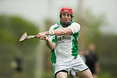 Philadelphia Gaelic Athletic Association 7s - Hurling - 29 April 2017