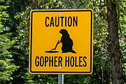 """CAUTION GOPHER HOLES"" sign, seen from Southern Yellowhead Highway BC-5, south of Valemount,  in the Monashee Mountains, part of the Columbia Mountains, British Columbia, Canada."