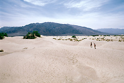 CA: Death Valley National Park, Sand dunes                               .Photo by Lee Foster, lee@fostertravel.com, www.fostertravel.com, (510) 549-2202.Image: cadeat228