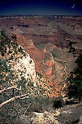 Grand Canyon, Below Rim, Bright Angel Trail, Cresent Moon Rise, Vertical