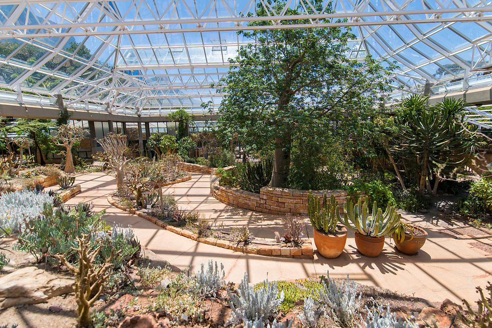 A greenhouse at the Kirstenbosch Botanical Gardens in Cape Town, South Africa