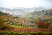 Monferrato, Langhe, Piedmont, Italy