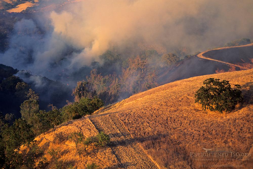 400 acre wildfire, near Mt. Diablo State Park, Contra Costa County, CALIFORNIA