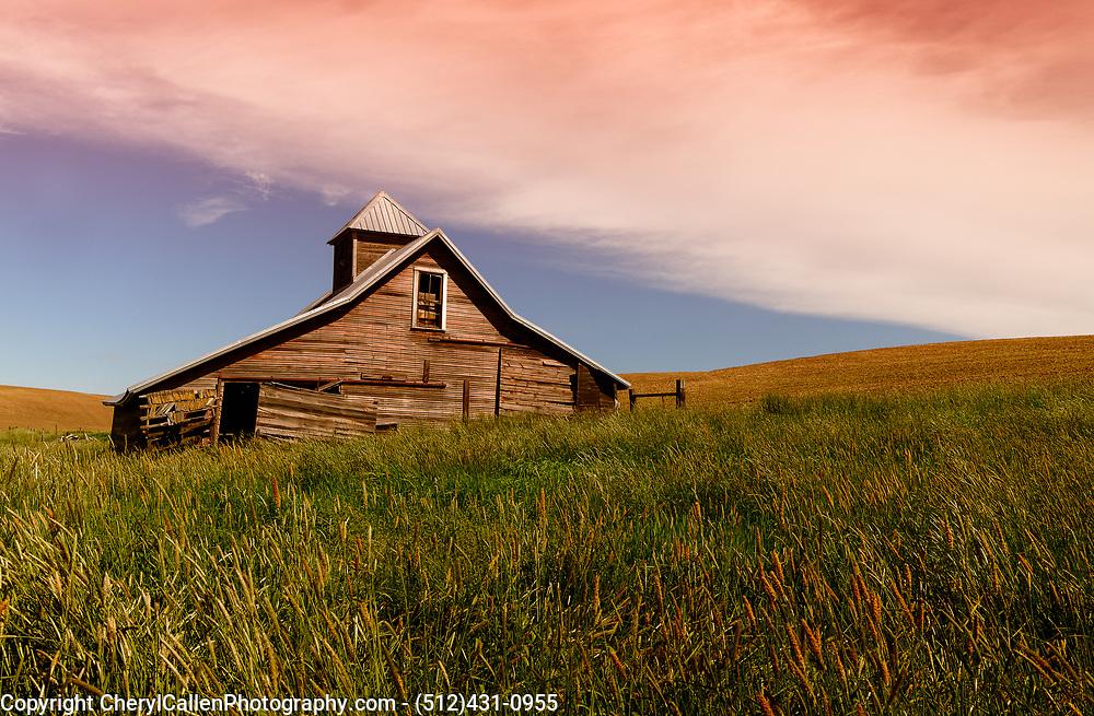 old barn in the wheat fields of Palouse, WA