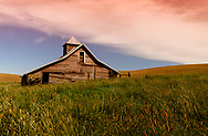 old barn in the wheat fields of Palouse, WA