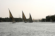 Felucca on Nile, Aswan, Egypt