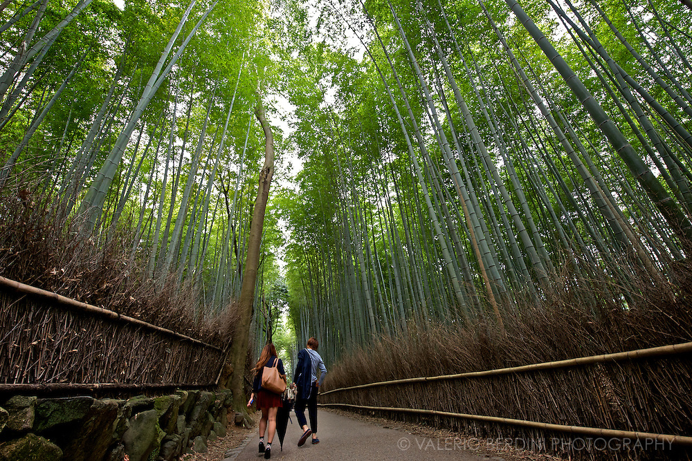 A young couple take a stroll in the Arashiyama path. A short walk through the Sagano bamboo forest, a green oasis 30 minute train ride north west of Kyoto in Japan..