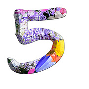 The number Five Part of a set of letters, Numbers and symbols of 3D Alphabet made with colourful floral images on white background