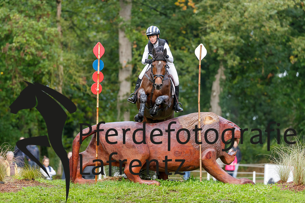 POWELL Caroline (NZL), GREENACRES SPECIAL CAVALIER<br /> Le Lion d'Angers - FEI Eventing World Breeding Championship 2019<br /> Teilprüfung Cross-Country 6 jährige<br /> 19. Oktober 2019<br /> © www.sportfotos-lafrentz.de/Stefan Lafrentz