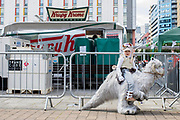 UNITED KINGDOM, London: 24 May 2019 <br /> Lachlan Smith, aged 7 poses for a picture in his Star Wars costume outside of the ExCeL Centre in London for the MCM London Comic Con. Thousands of cosplay enthusiasts will come to the ExCeL Centre across the next three days to enjoy the convention.