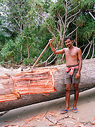 Cutting a fallen tree on North Andaman Island beach